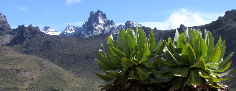 הר קניה / קניה - פסגת הר קניה