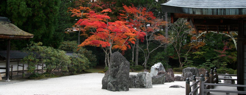 יפן - גן יפני בשלכת בהר קויה