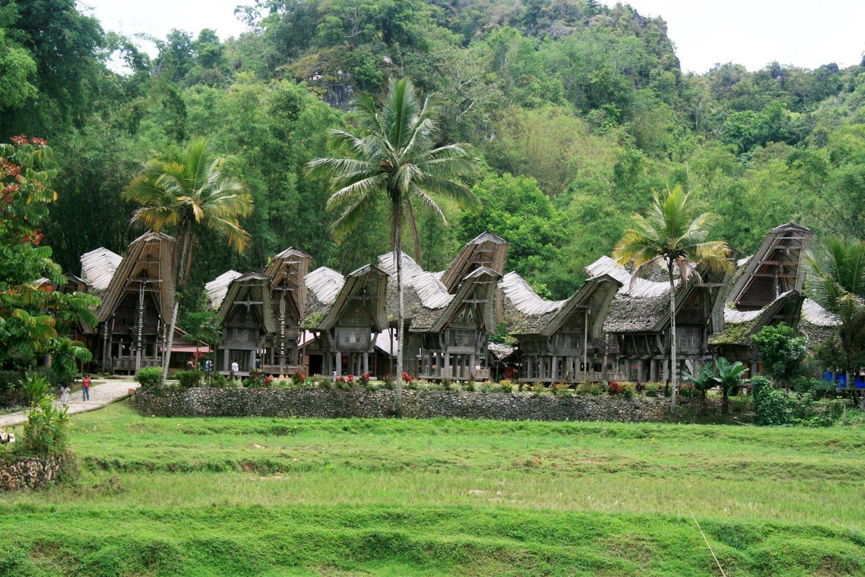 בתי סירה בכפר. טאנה טורג'ה, סולאווסי, אינדונזיה