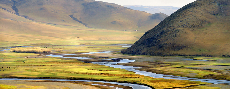 מישורי העשב באינסופיים של מונגוליה