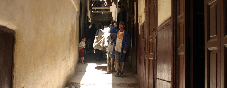 סמטאות פס במרוקו