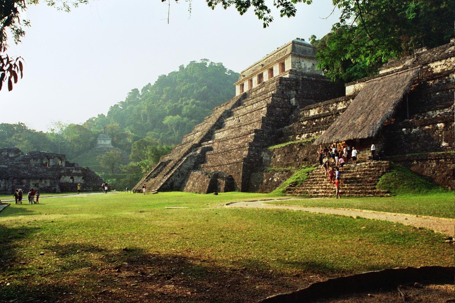 פירמידה באתר המאיה בפאלנקה, מחוז צ'יאפס, מקסיקו
