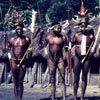 לוחמים משבט דאני, וואמנה, עמק באליאם, מערב פפואה, אינדונזיה