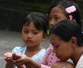 20 יום לארכיפלג האינדונזי - ג'אווה, סולאווסי ובאלי