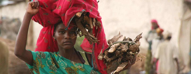 הראר / אתיופיה - אשה עם מטען עצי הסקה