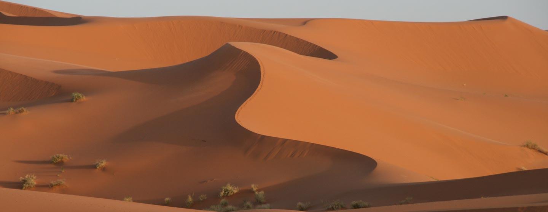 מרוקו / קדמת הסהרה - דיונות חול במרזוגה