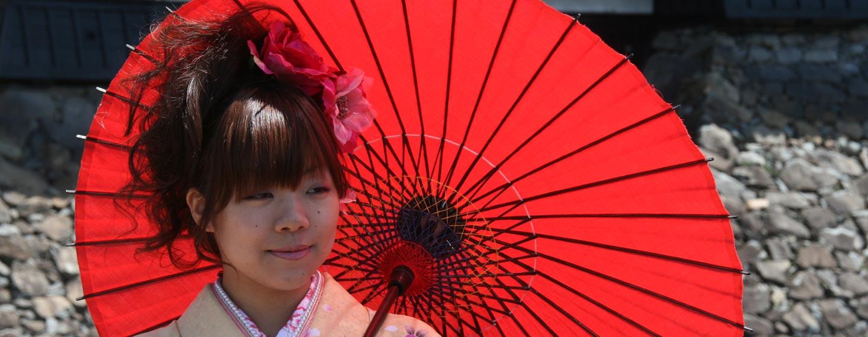 יפן - נערה, מטריה, גשר, טירה ופריחת הדובדבן בבוקר אביב