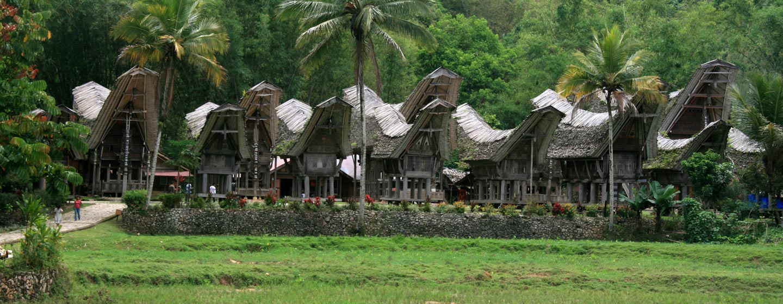 סולאווסי / אינדונזיה - כפר בטאנה טוראג'ה