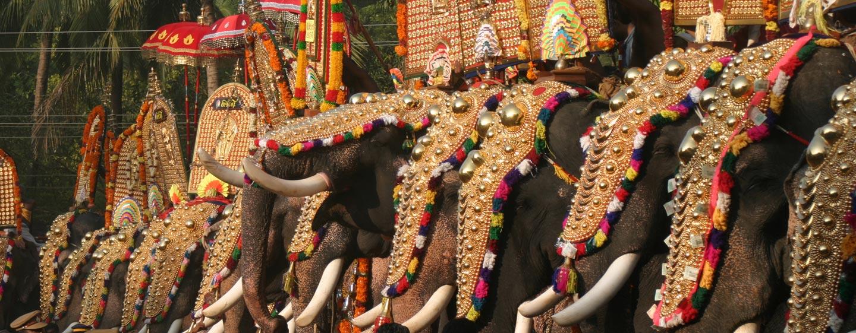 דרום הודו - פילים מקושטים בפסטיבל כפרי בקראלה