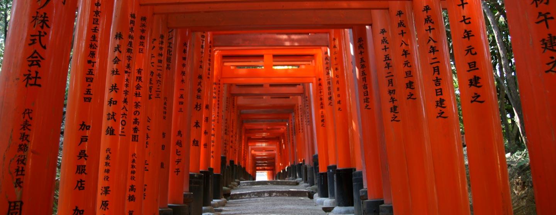קיוטו - שערי טורי במקדש שינטו