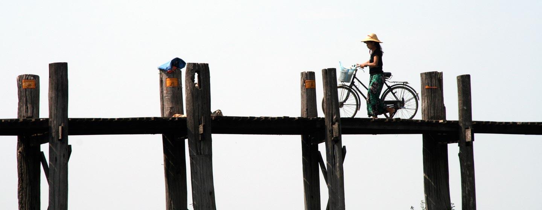 גשר או ביין - אלף ומאתיים מטר של עצי טיק בבורמה עילית