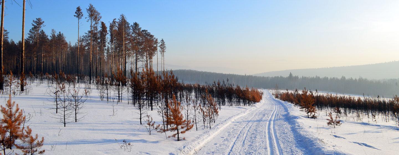 סיביר, רוסיה