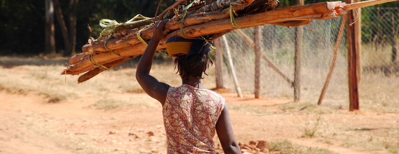 אישה נושאת עצים, טנזניה