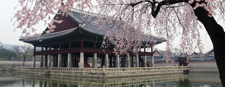 קוריאה הדרומית